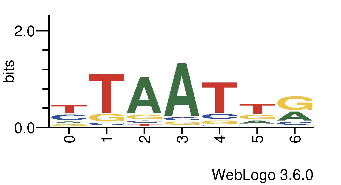 http://tfbsshape.usc.edu//temp/preprocess_data/jaspar/MA0175.1/binding_sites.png