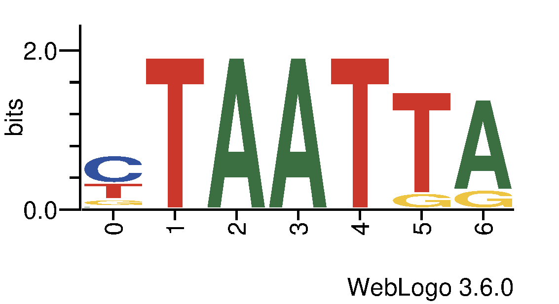 tf_dna_logos_methyl