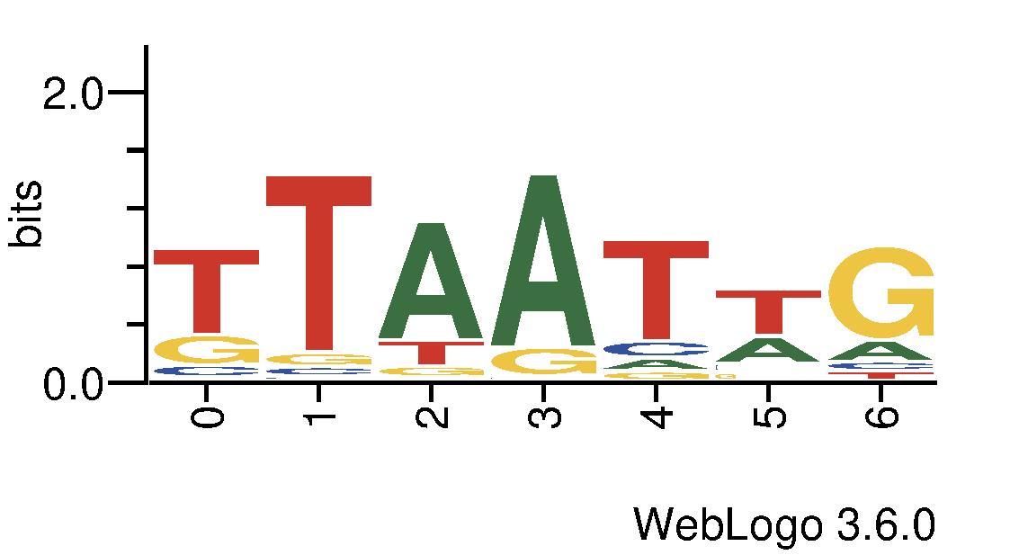 http://tfbsshape.usc.edu//temp/preprocess_data/jaspar/MA0444.1/binding_sites.png
